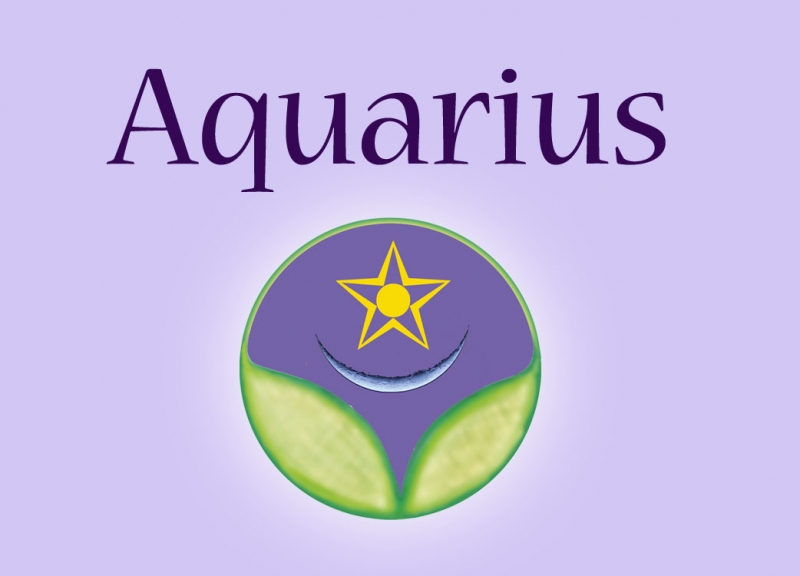 Aquarius ~ An Elixir of New Beginnings -