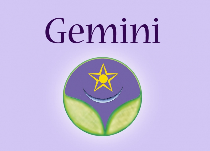 Gemini ~ Honesty, Truth, Freedom -